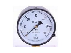 数字电接点压力表,HC-Y810,HC-Y820,HC-Y100